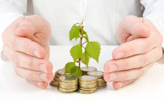 Вклад «Пенсионный Плюс» в Россельхозбанке в 2019 году: условия и проценты для пенсионеров
