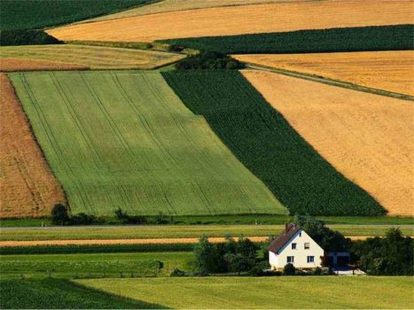 Инвестиции в земельные участки: способы вложения в землю