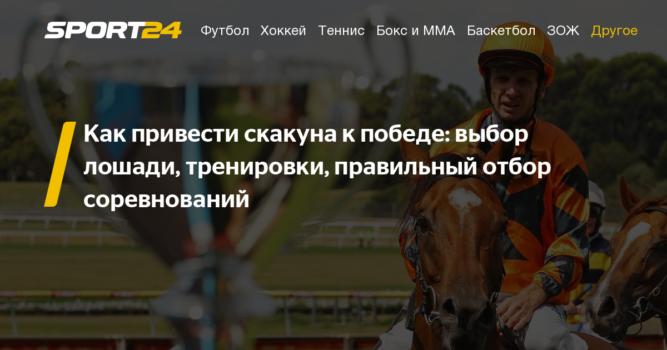 Разведение лошадей: как правильно делать бизнес, выгодно это или нет и особенности