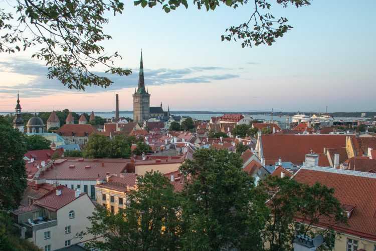 Особенности ВНЖ Эстонии в 2020 году | InternationalWealth.info